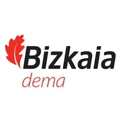DEMA, Agencia Foral de Empleo y Emprendimiento
